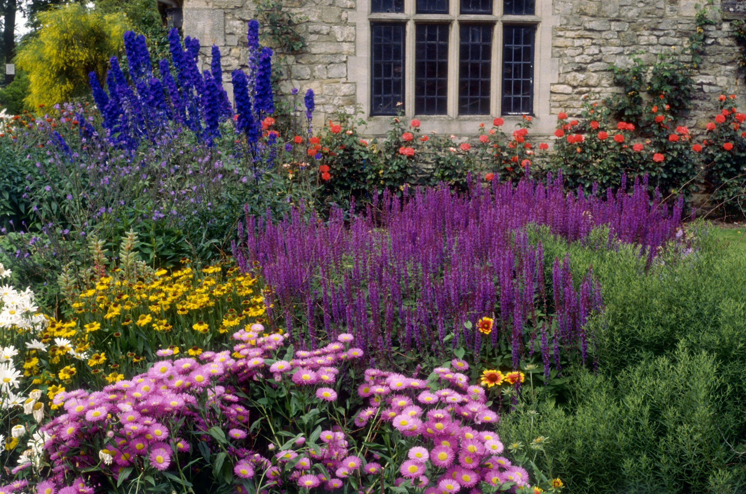 Tips About Gardens And Plants